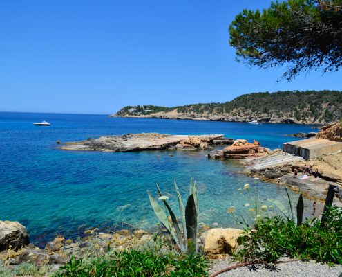 Yoga & Berufscoaching Workshop Ibiza